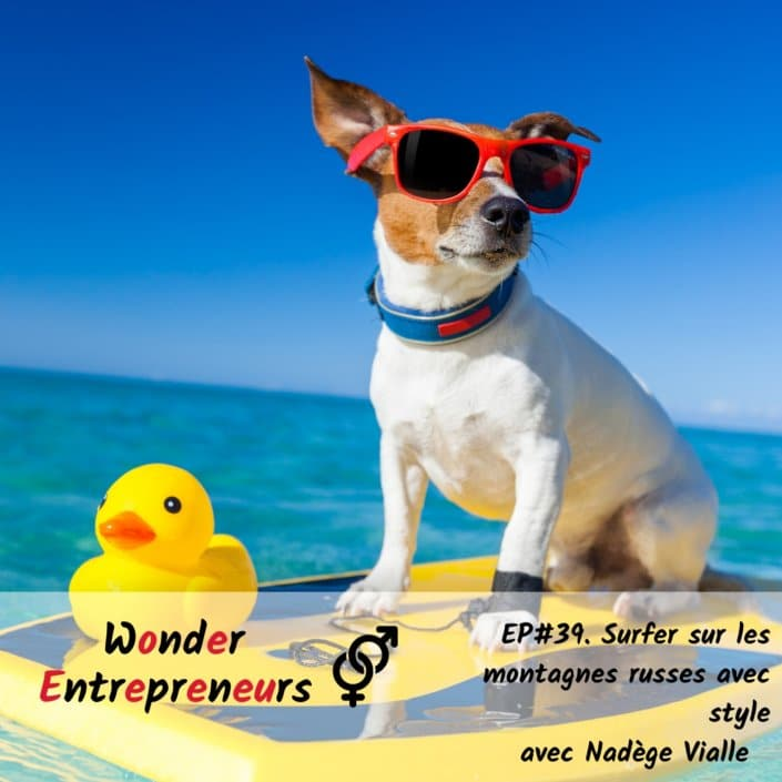Ep 39 Podcast Wonder Entrepreneurs Surfer sur les montagnes russes